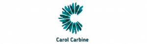 Carol Carbine Consulting